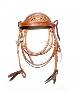 Western Pool's bridle